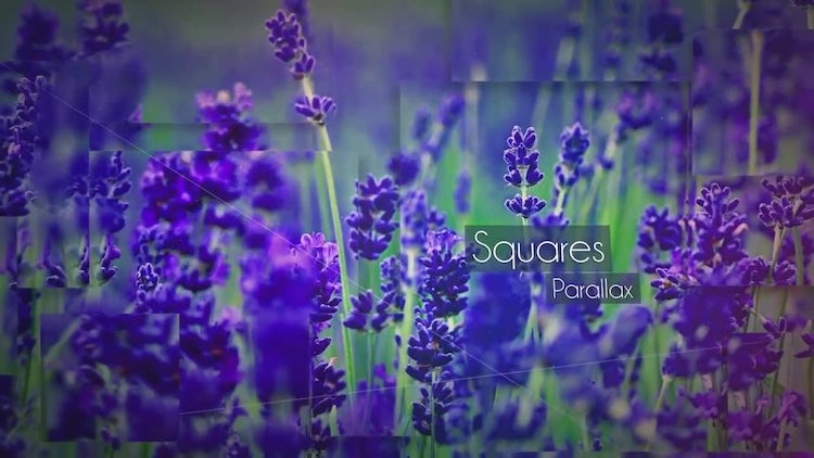 Squares Parallax: After Effects Templates