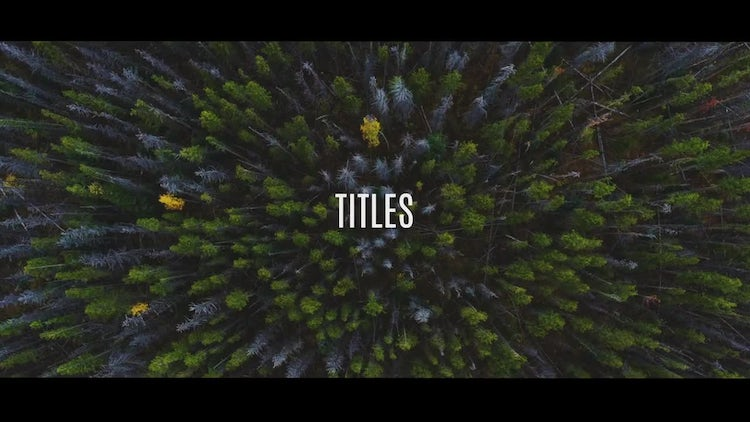 Dynamic Typographic Promo: After Effects Templates