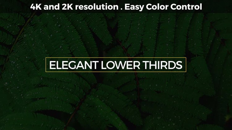 Elegant Lower Thirds: After Effects Templates