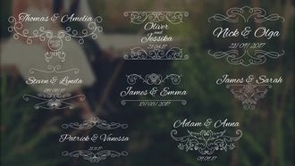 8 Wedding Titles V2: Premiere Pro Templates