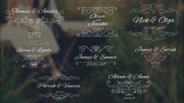 8 Wedding Titles V2: Premiere Pro Templates