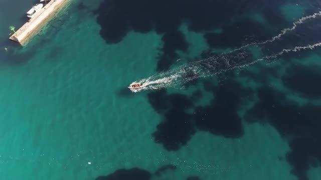 Speedboat On Sea: Stock Video