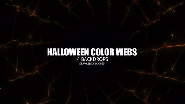 Colored Spider Webs: Stock Motion Graphics