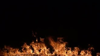 Fire Burning On Black: Stock Video