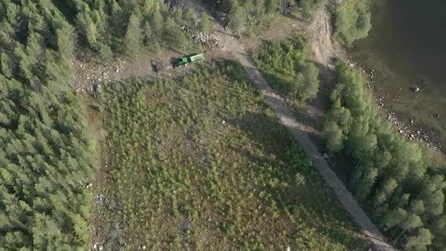 Deforestation: Stock Video