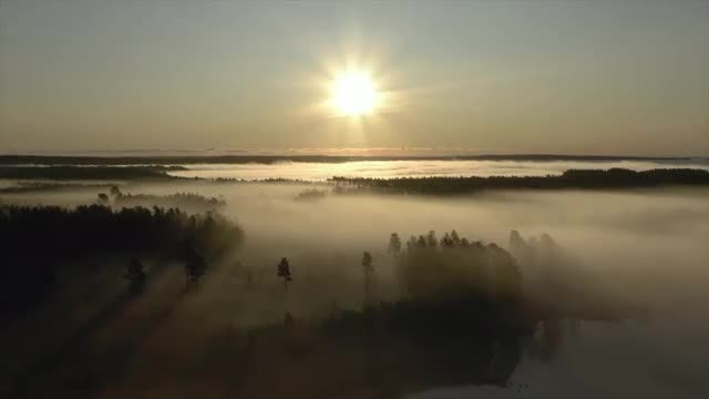 Epic Fog Sunrise Aerial: Stock Video