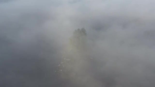 Island In Thick Fog: Stock Video