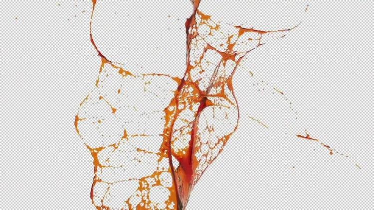 Set of Colored Oil Splash : Motion Graphics