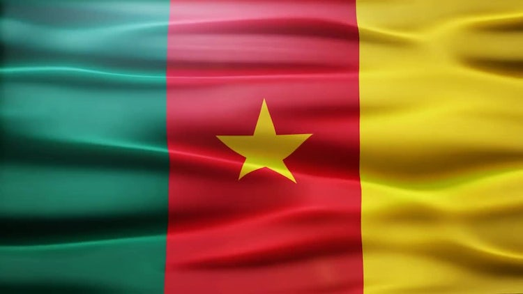 Cameroon Flag: Motion Graphics