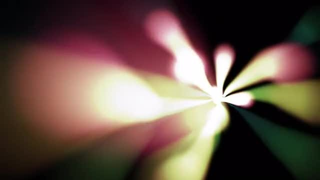 Light Bloom: Stock Motion Graphics