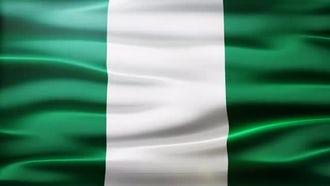 Nigeria Flag: Motion Graphics