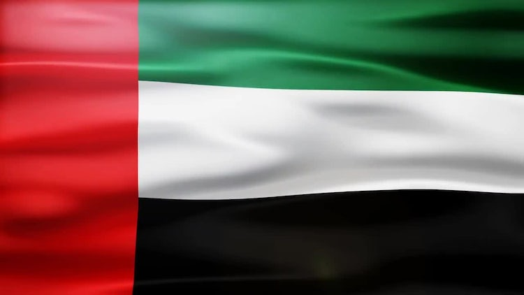 United Arab Emirates Flag: Motion Graphics