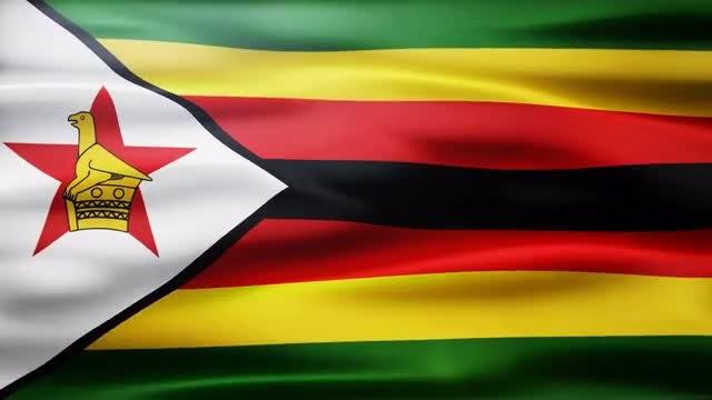 Zimbabwe Flag: Stock Motion Graphics