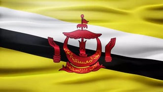 Brunei Flag: Motion Graphics