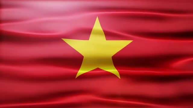 Vietnam Flag: Stock Motion Graphics