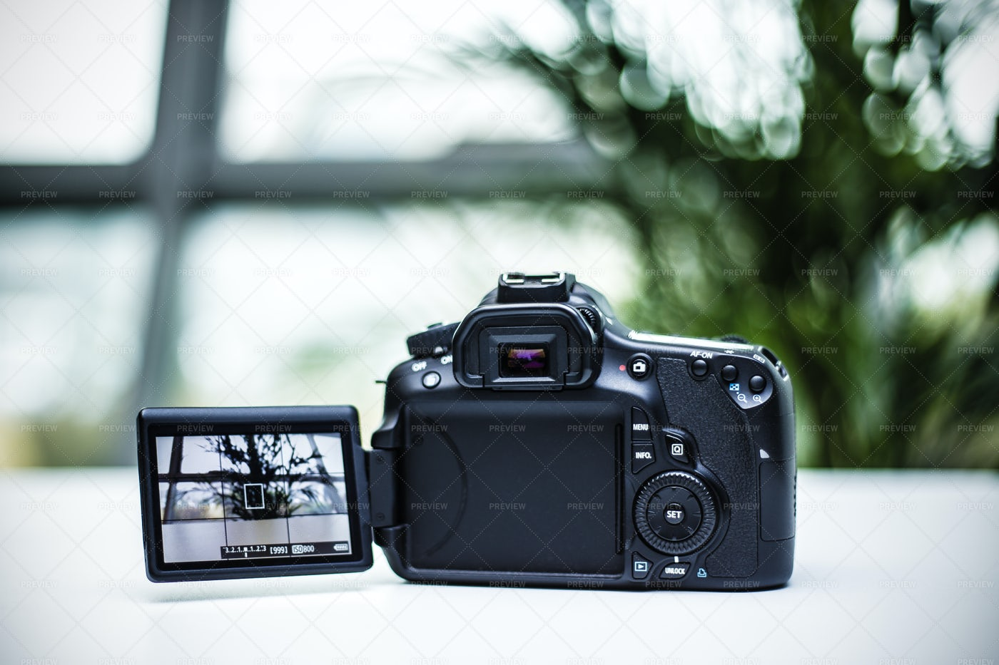 Screen Display On Digital Camera: Stock Photos