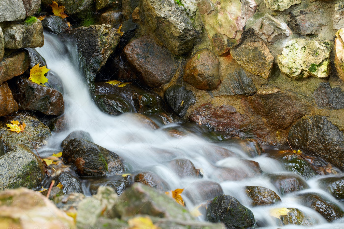 Creek With Running Water: Stock Photos