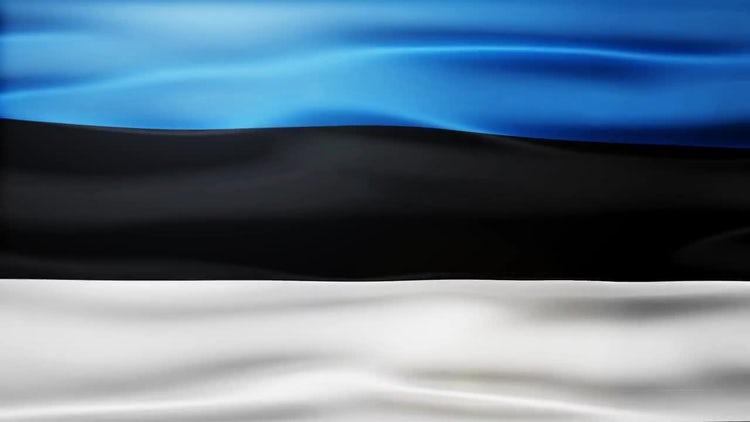 Estonia Flag: Stock Motion Graphics