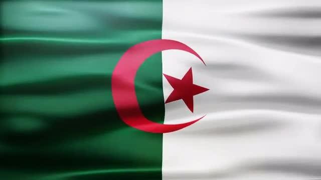 Algeria Flag: Stock Motion Graphics