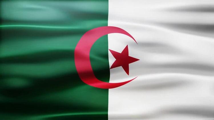 Algeria Flag: Motion Graphics