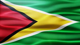 Guyana Flag: Motion Graphics