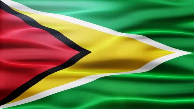 Guyana Flag: Stock Motion Graphics
