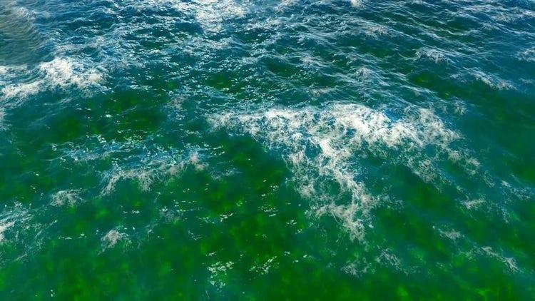 The Ocean v2: Motion Graphics