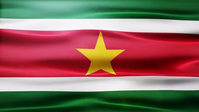 Suriname Flag: Stock Motion Graphics