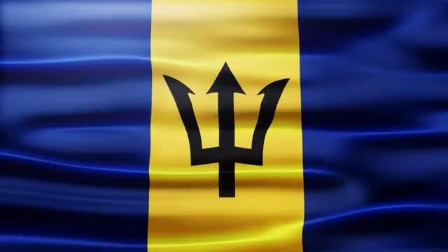 Barbados Flag: Stock Motion Graphics