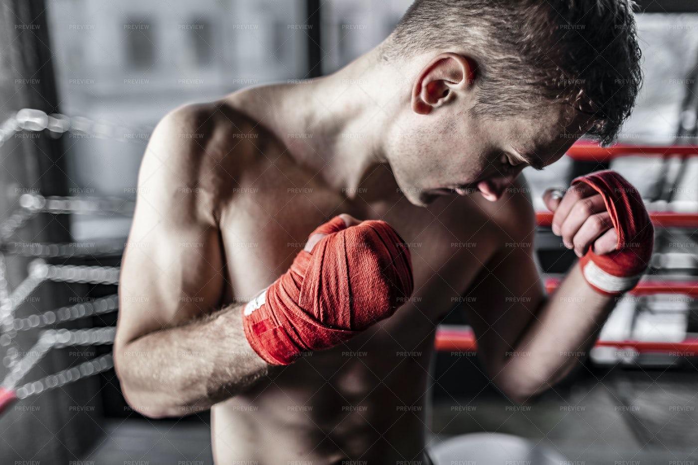 Boxer's Strength: Stock Photos