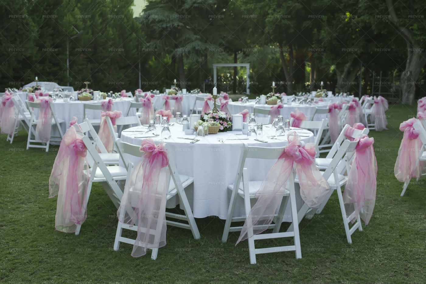 Pink Bows On Wedding Chairs: Stock Photos