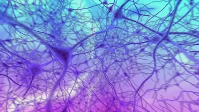 Neurons: Stock Motion Graphics