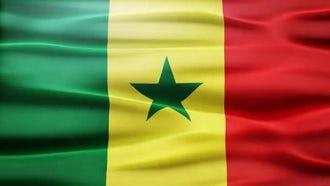 Senegal Flag: Motion Graphics