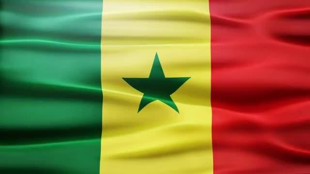 Senegal Flag: Stock Motion Graphics