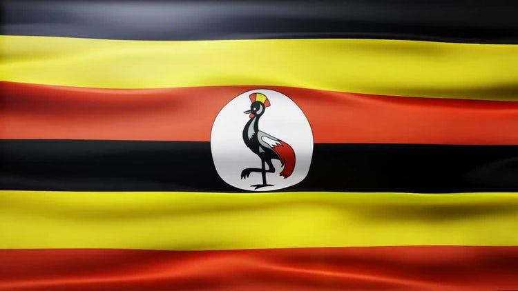 Uganda Flag: Stock Motion Graphics