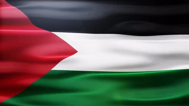 Palestine Flag: Stock Motion Graphics