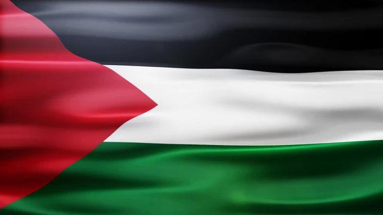 Palestine Flag: Motion Graphics