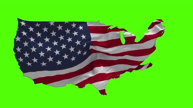 USA Shape Flag: Stock Motion Graphics