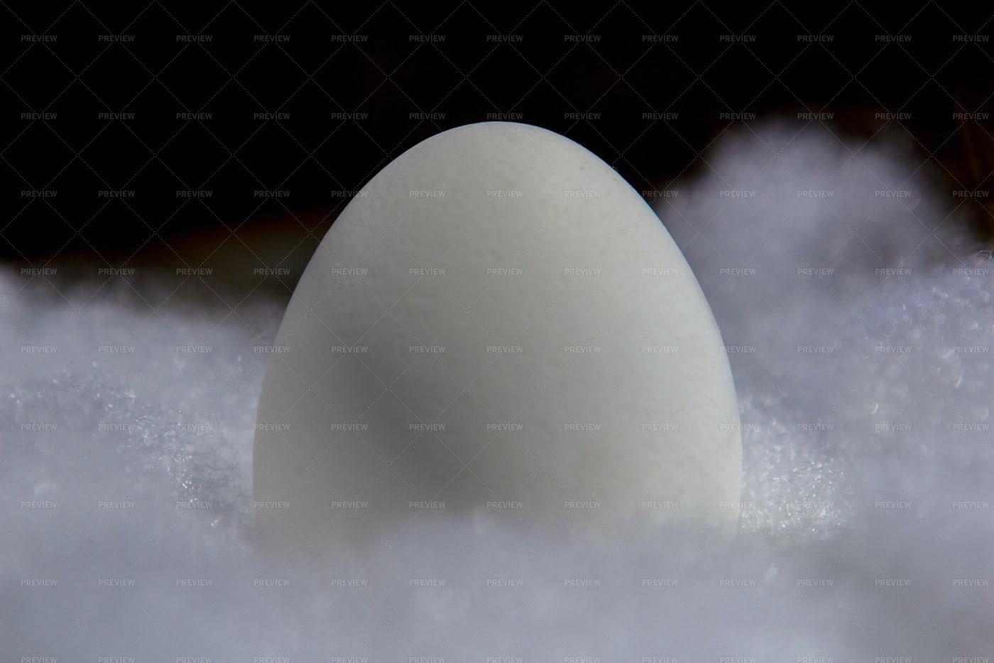 White Egg On White Cotton: Stock Photos