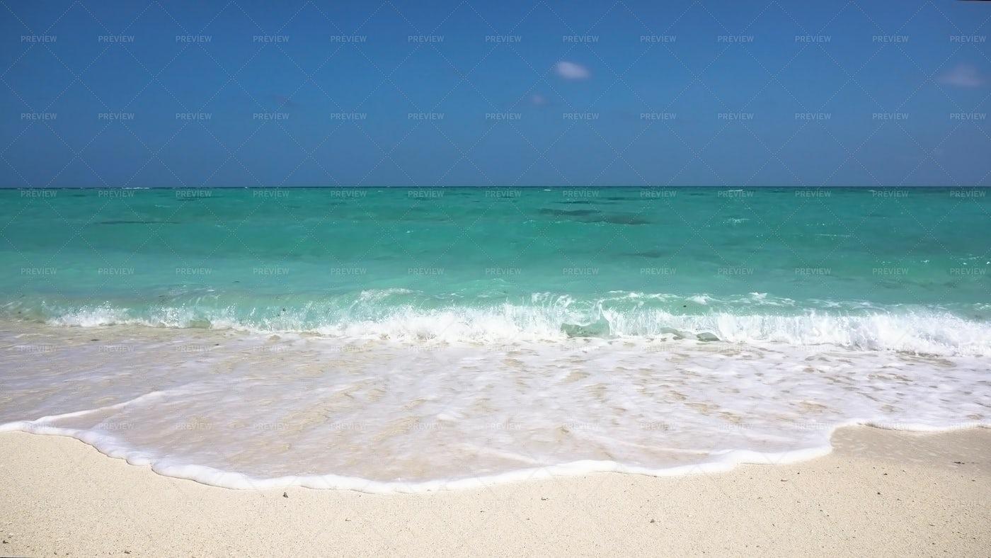 Tropical Beach: Stock Photos