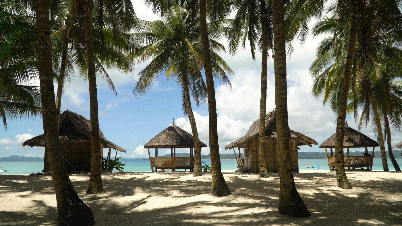 Beach On Tropical Island: Stock Photos