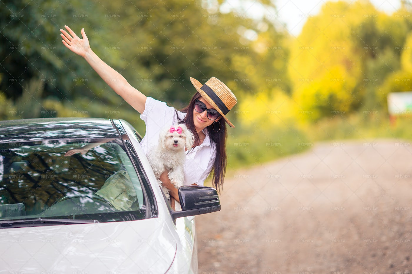 Vacations With Her Dog: Stock Photos