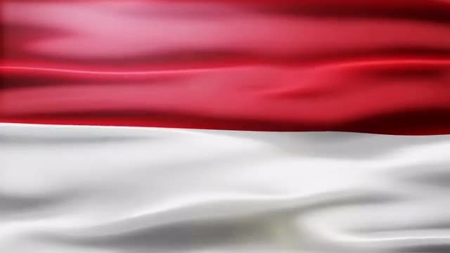 Monaco Flag: Stock Motion Graphics