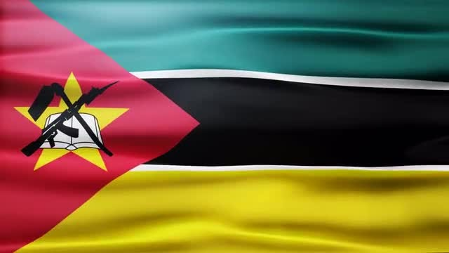 Mozambique Flag: Stock Motion Graphics