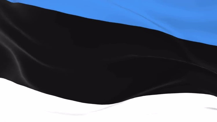 Estonian flag on wind: Stock Motion Graphics