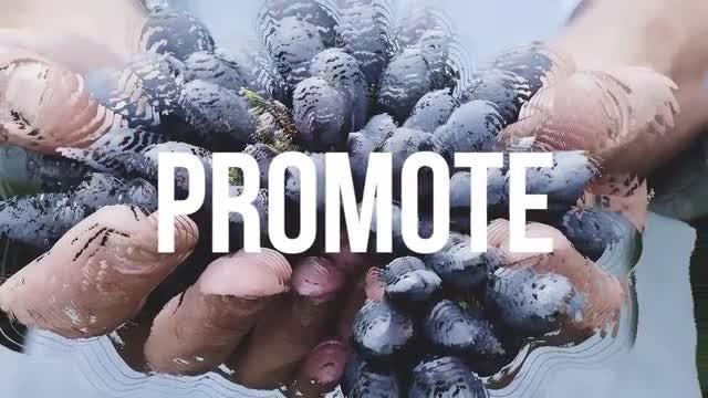 Stomp Parallax Opener: Premiere Pro Templates