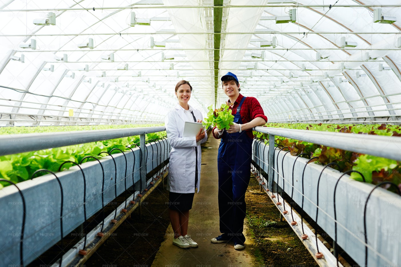 Agricultural Staff: Stock Photos
