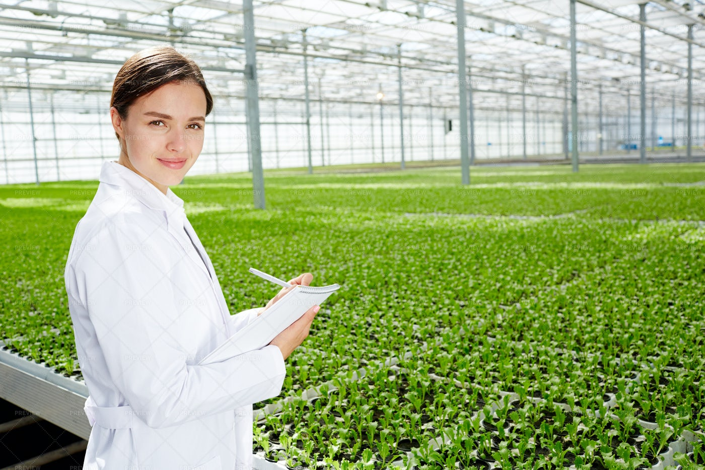 Agricultural Engineer At Work: Stock Photos