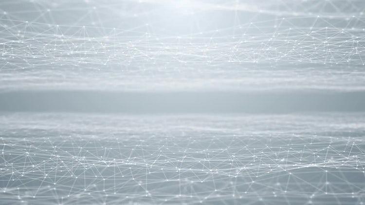 Plexus White Background: Motion Graphics