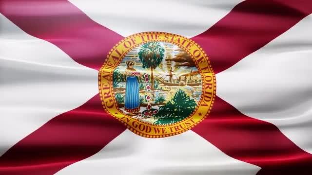 Florida Flag: Stock Motion Graphics